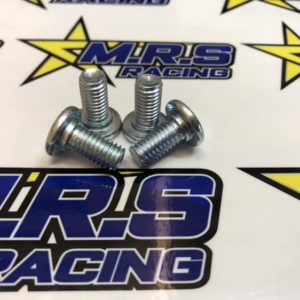 Set of 4 Disk Bolts